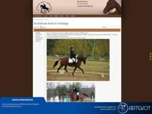 Strona dla Trening Koni i Jeźdźców