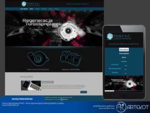 Strona internetowa Paso