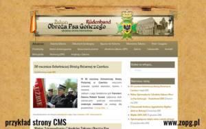 strony_www_cms